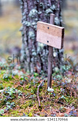 Wooden empty plaque in the forest, solitude, solitude, environmental protection #1341170966