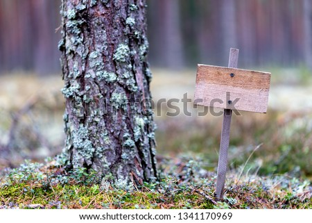 Wooden empty plaque in the forest, solitude, solitude, environmental protection #1341170969