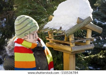 Wooden feeder for birds in snowy garden