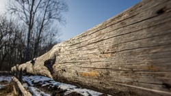 Wooden fence against the background of silhouettes of trees on a sunny day. Spring season in March. Web banner.