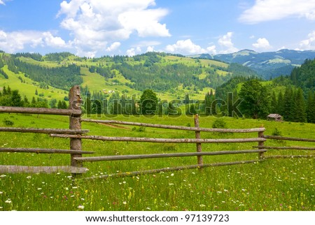 wooden fence on meadow in summer day