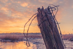 Wooden fence post with barb wire in the winter sunrise