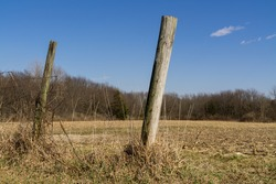 Wooden fence posts in the afternoon light with Midwest countryside in background.