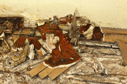 wooden floor decayed by dry rot ( Serpula lacrymans, the most dangerous fungus in buildings )