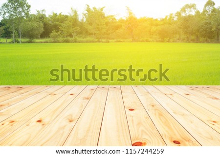 wooden floor on green rice field background with sunrise #1157244259