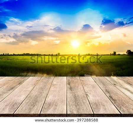 Wooden floor on Rice field and sky background in sunset #397288588
