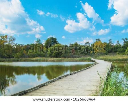 Wooden foot bridge in landscape park. Early autumn in Lillie Park, Ann Arbor, Michigan, USA.