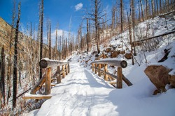 Wooden foot bridge on a mountain side in Rocky Mountain National Park. The snow covered log bridge is on a hiking and snowshoeing trail to Cub Lake through a section charred by the Fern Lake wildfire.
