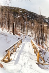 Wooden foot bridge on a mountainside in Rocky Mountain National Park. This snow covered log bridge is on a hiking and snowshoeing trail to Cub Lake through a section charred by the Fern Lake wildfire.
