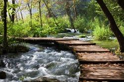Wooden footbridge across stream in the mountain forest, Croatia.