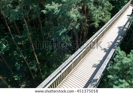 Wooden footbridge crossing high up over a forest. Looking down from above the trees #451375018