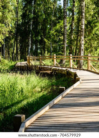 wooden footbridge in the forest in the countryside surrounded by