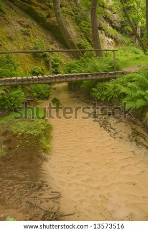 Wooden footpath over clean brook in national park Bohemian Switzerland