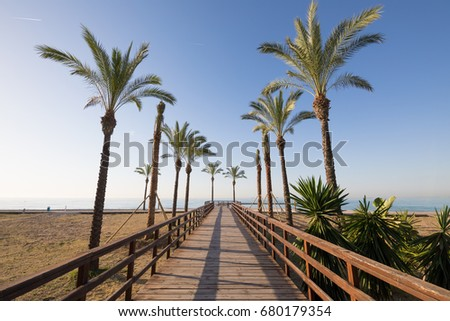 wooden footway with palm trees in Els Terrers Beach in Benicassim, Castellon, Valencia, Spain, Europe. Blue clear sky and Mediterranean Sea