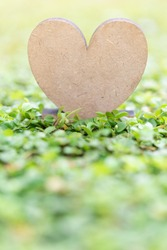 Wooden heart icon on fresh green grass background in morning sun light