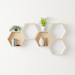 wooden Hexagon shelf little tree, books ,decoration copy space, mock up, hexegon