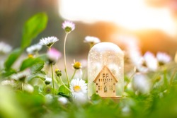 Wooden home model under glass dome around green grass and flowers background. Environmental awareness eco friendly heating, sunlight effect, soft selective focus. House building, sun heating system