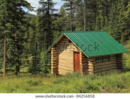 Wooden house with a green roof in wood