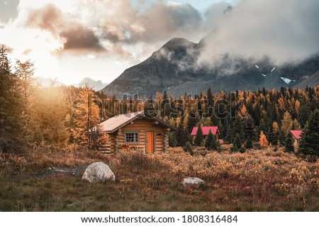 Wooden huts with sunshine in autumn forest at Assiniboine provincial park, Canada Photo stock ©