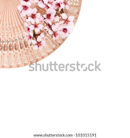Wooden  japanese fan and spring flowers isolated on a white background.