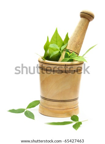 Wooden mortar and pestle with green herbs