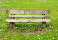 Wooden park bench in nature. A good place to sit