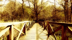Wooden park bridge in early spring - sepia tone
