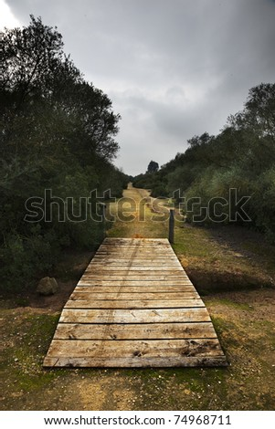 Wooden path at a playground