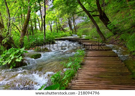 wooden path in plitvice...