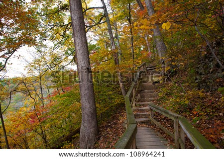 Wooden path in the forest with the color of fall foliage