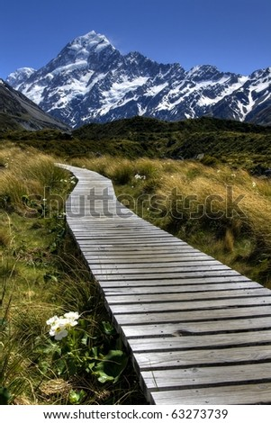 Wooden Path leading to Mount Cook, New Zealand