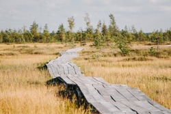 Wooden path on a Elnya swamp in Belarus