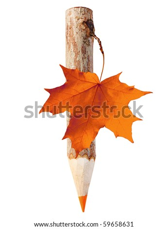 Wooden pencil with maple leaf.
