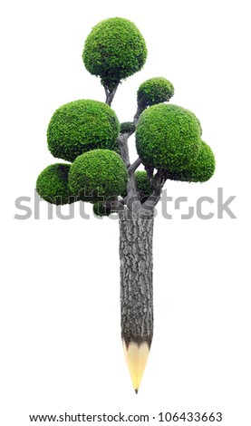 Wooden pencil with Tree on white background