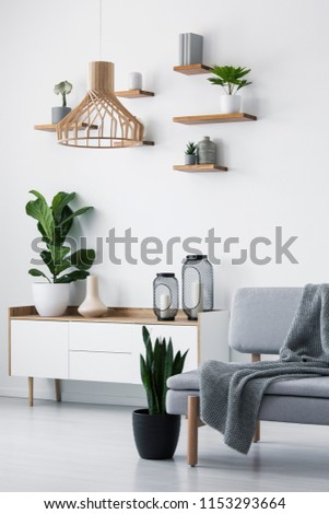 Wooden pendant light, simple shelves on a white wall and a plant on a scandinavian sideboard in a monochromatic living room interior #1153293664