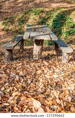 wooden picnic table in a park in autumn