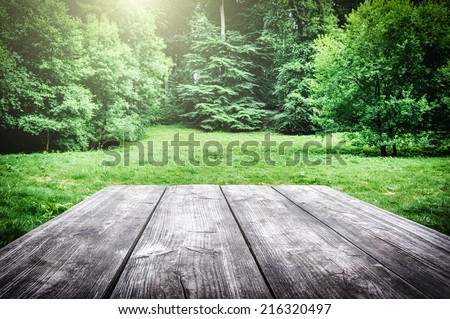 Wooden picnic table with green nature on the background