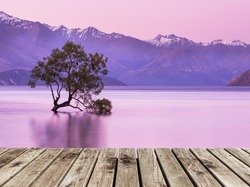 wooden pier and That Wanaka Tree at twilight