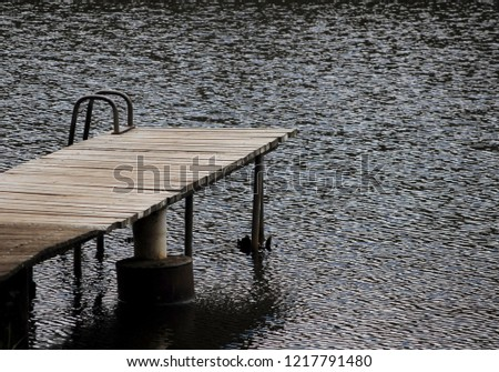 Wooden pier leading out to water #1217791480