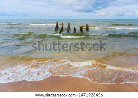 Wooden piles of an old pier in the Baltic Sea