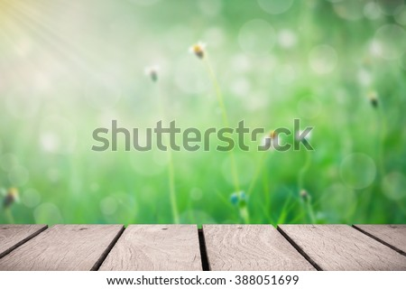 Wooden platform at garden for background