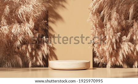 Wooden Podium with dry pampas grass for product promotion and cosmetics display, sunshade on the scene, Natural beauty pedestal, and minimal copy space banner. realistic rendering. 3d illustration.