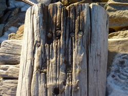 wooden pole damaged by bad weather and frost. High quality photo