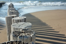 Wooden poles on the beach