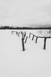 Wooden poles sticking out of the snow by the lake. Black and white.