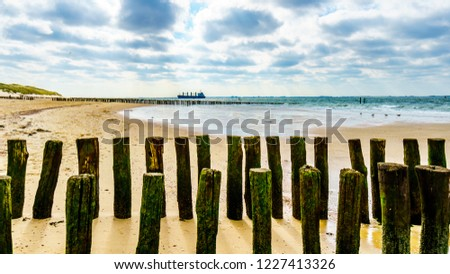 Wooden Posts of a beach erosion protection system along the beach at the town of Vlissingen in Zeeland Province in the Netherlands