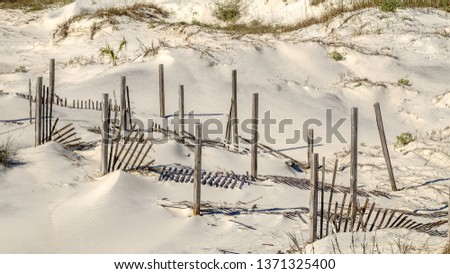 Wooden posts standing tall among fallen, or falling, sand fences on a coastal dune, in letterbox format, for themes of conservation and setbacks, wind, transience