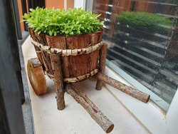 Wooden pot with small carnation stems in the shape of a carriage