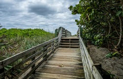Wooden ramp and stairs over  sand dunes leading to a Florida beach with sea grape trees and other dune vegetation.