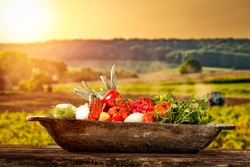 Wooden retro plate of fresh vegetables and summer landscape of agriculture. Free space for your decoration.